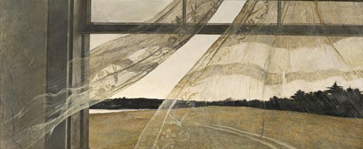 wyeth-banner